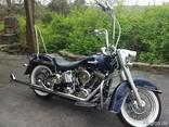 2014 Harley Davidson Softail Deluxe FLSTN - photo 1
