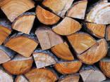 Brennholz in Paletten - photo 2
