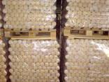 Briquettes Nestro - фото 6