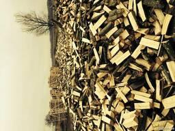 Дрова колоті сухі граб , ясен, дуб, береза - фото 2
