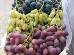 Фрукты и овощи Узбекистана - фото 2