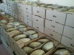 Фрукты и овощи Узбекистана - фото 7