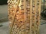 Купим дрова бук, граб, дуб, ясень, берёза, ольха. - фото 2