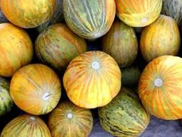 Melonen und Wassermelonen