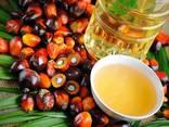 Пальмовое масло - фото 3