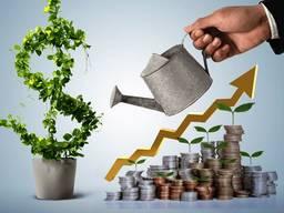 Поиск инвестора