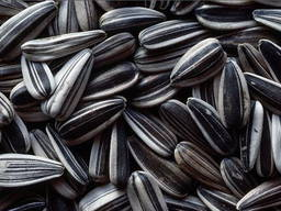 Sunflower seeds - Buy at the best price on Flagma.de