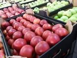 Свежие яблоки, сливы, груши и овощи из Польши - фото 1