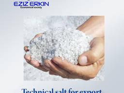 Технический соль